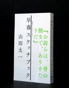 yamadataichi01